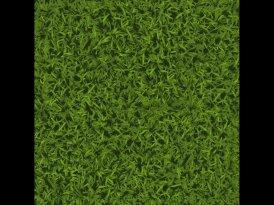 KMS-PROM – zeleno je evergreen