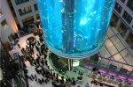 AquaDom – najveći zaobljeni akvarij na svijetu