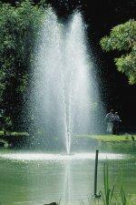 Voda - izvor života!