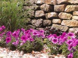 Kamen u vrtu