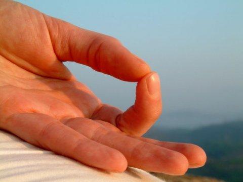 Mudre – moć iscjeljivanja u vašim rukama