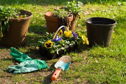 Dolazi proljeće, vrijeme je za sadnju vrta