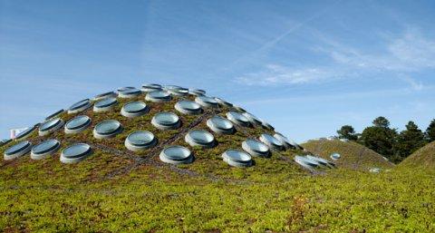 """Američki muzej sa """"živim krovom"""" i njemačkim staklom"""